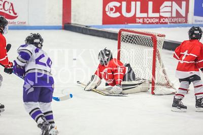 Red- Elmbrook vs  Dubuque-12