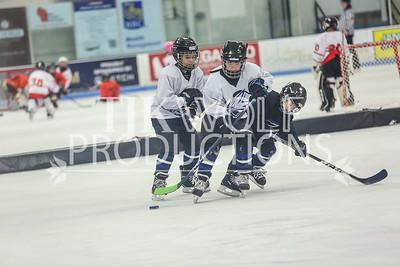 Blue- JVL Jets vs  JVL Whalers-16