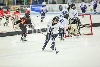 White- JVL Sharks vs  Verona Flyers-23