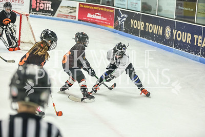 White- JVL Sharks vs  Verona Flyers-9