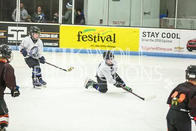 White- JVL Sharks vs  Verona Flyers-19
