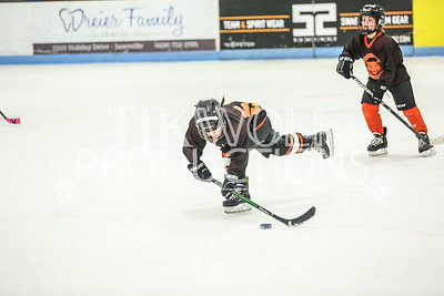 White- JVL Sharks vs  Verona Flyers-15