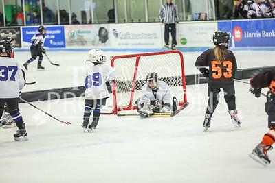 White- JVL Sharks vs  Verona Flyers-24