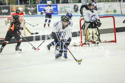 White- JVL Sharks vs  Verona Flyers-22