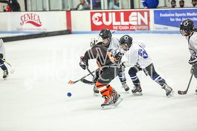White- JVL Sharks vs  Verona Flyers-26
