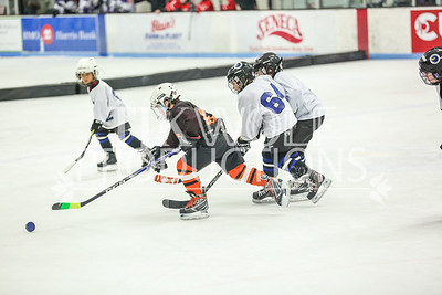 White- JVL Sharks vs  Verona Flyers-28