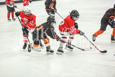 White- Dubuque vs  Verona Flyers-37