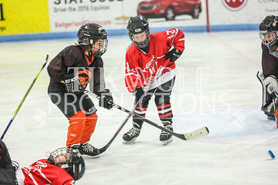 White- Dubuque vs  Verona Flyers-11