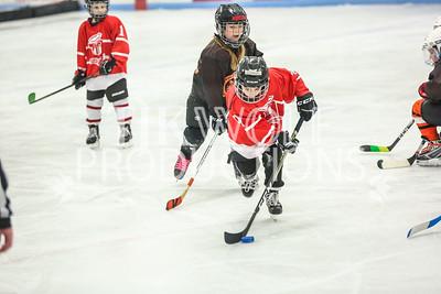 White- Dubuque vs  Verona Flyers-39