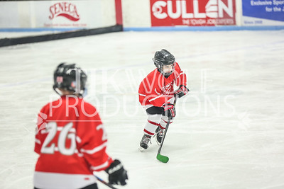 White- Dubuque vs  Verona Flyers-8
