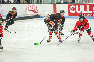 White- Dubuque vs  Verona Flyers-45