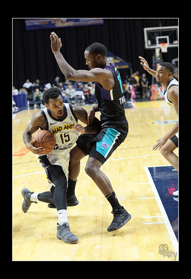 IMAGE: https://photos.smugmug.com/Sports-Events/Mad-Ants-2017-2018/Nov-7/i-JSmbZP6/0/8f9920b5/X2/aFX8A3032-X2.jpg