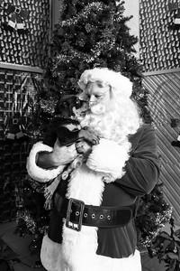 Pat-O'Brien-Santa-181215-3550-BW