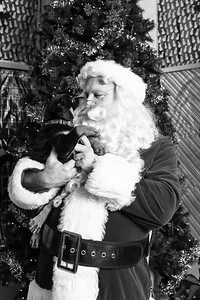 Pat-O'Brien-Santa-181215-3554-BW