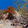 Hiker's view of blue skies and autumn trees and quartzite boulders and sheer rock walls which border the Ice Age National Scenic and Balanced Rock Trails within southeastern  Devils Lake State Park (USA WI Baraboo; RAO 2012 Nikon D800 Image 6572)