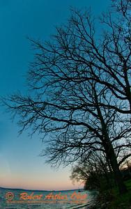 Golfer's and walker's view of oaks towering over Lake Mendota at sunset along Bishops Bay (USA WI Middleton; RAO 2012 Nikon D300s Image 4335)