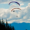 Hiker's view of colorful double para-sailors over the forested slopes of Mount Alyeska near the Alyeska Resort and Girdwood Alaska (USA Alaska Girdwood)