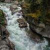 SFE-AO_8123_ATO.WestUSACanada2014-CAN.Alberta.Jasper.JasperNP.MaligneCanyon.RapidsWithLimestoneCliffs-B (DSC_8123.NEF)