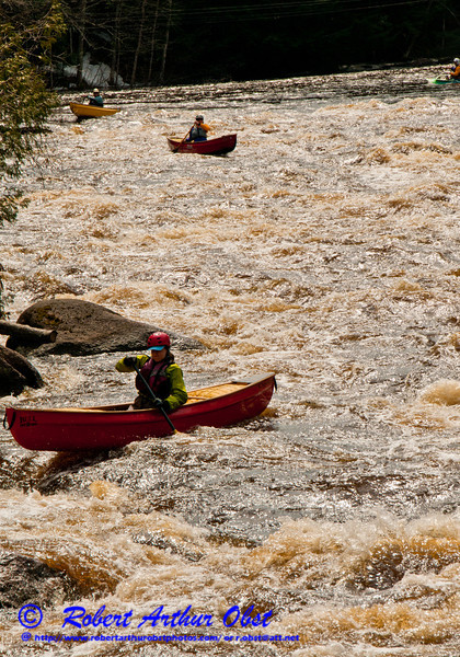 Trio of open canoe women solo paddlers in great form engaging the start of the second pitch of one mile long Boy Scout Rapids with snow of the river banks at high flow or 1400 frigid CFS or about 25 inches on Section 3 of the wild Wolf River within Langlade County (USA WI White Lake; Obst FAV Photos 2013 Nikon D300s Sports Fun Extraordinaire Image 5177)