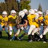 Steelers-0564