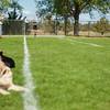 Soccer-5842