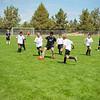 Soccer-5906