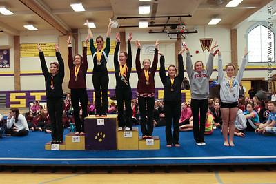 Madison Memorial Gymnastics - Jan 12, 2013