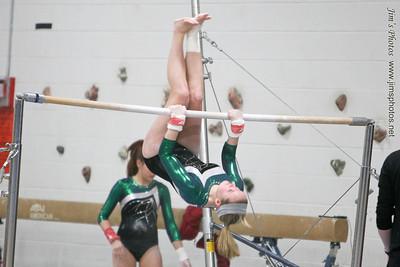 Madison Memorial Gymnastics - Feb 12, 2013