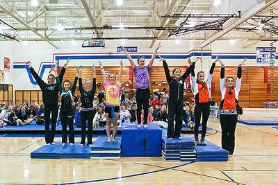 Madison Memorial Gymnastics - Feb 16, 2013