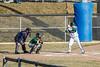 baseball-8825