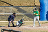 baseball-8833