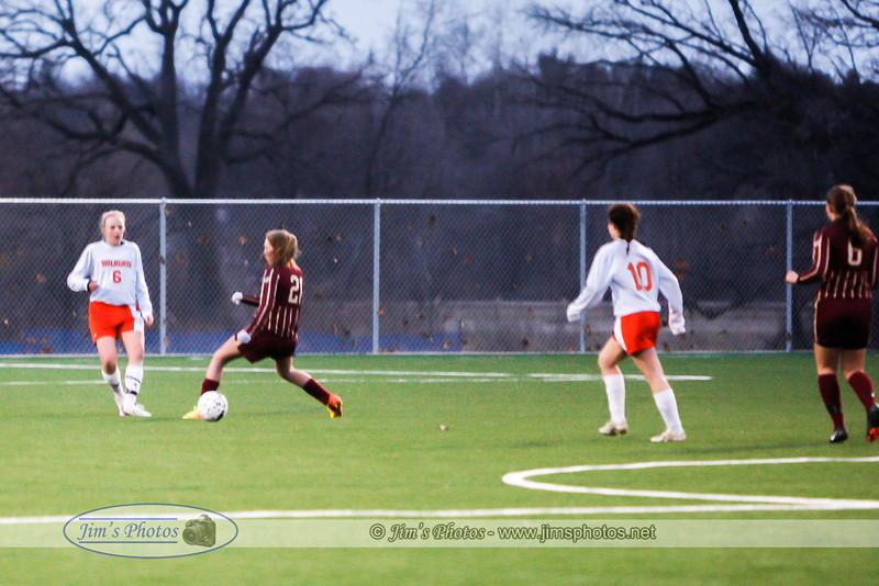 soccer-6941