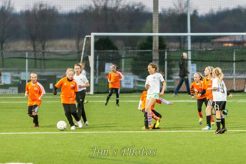 soccer-4586
