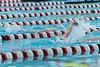 swim-2685