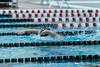 swim-2694