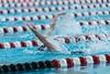 swim-2686