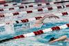 swim-3748
