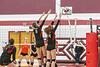 volleyball-8462