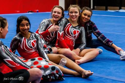 2016-17 High School Gymnastics