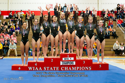 HS Sports - WI State Gymnastics Tournament - March 03, 2017