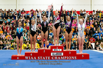 HS Sports - WI State Ind Gymnastics Tournament - March 04, 2017