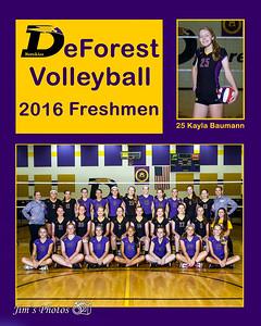 Volleyball 2016 Freshmen