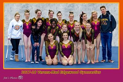 2017-18 Gymnastics