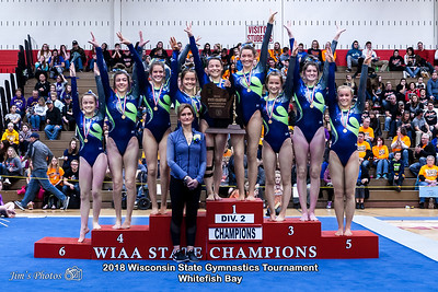 HS Sports - WI State Team Gymnastics Tournament [d] March 02, 2018