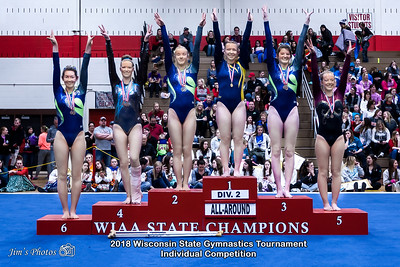 HS Sports - Wi State Ind Gymnastics Tournament [d] March 03, 2018