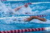 swim-2905