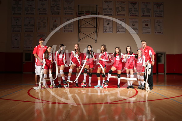 Antonian Middle School 2016-17 Volleyball