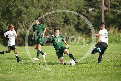 St Gregory 2016 Soccer vs St Lukes