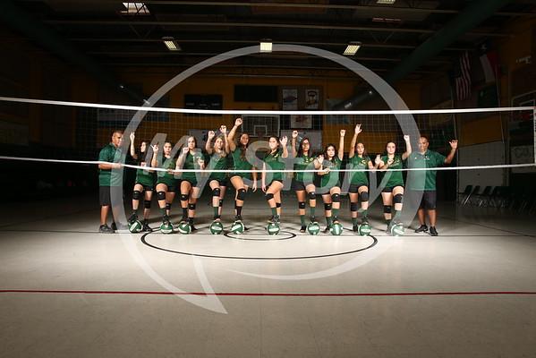 StG Volleyball 2016-17 Season