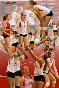 A poster of the Susquehannock girls volleyball varsity team. (Vertical edition)